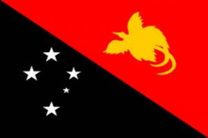Papua New Guinea Large Country Flag - 5' x 3'.
